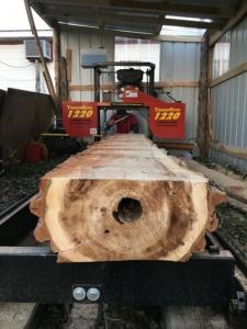 cluster forstholzsachsen sägewerk
